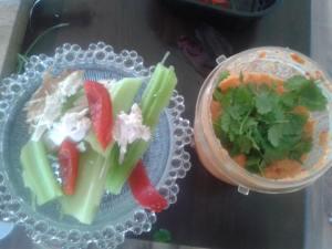 veggie sticks and salsa dip