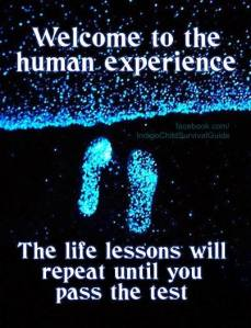 human experience